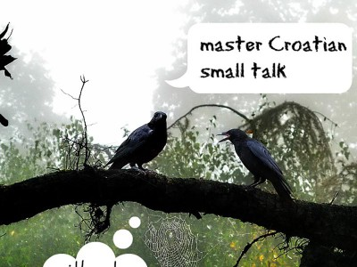 Master Croatian small talk without speaking the language
