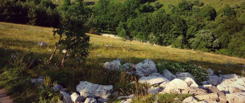 Krmpote - hiking Croatian coast
