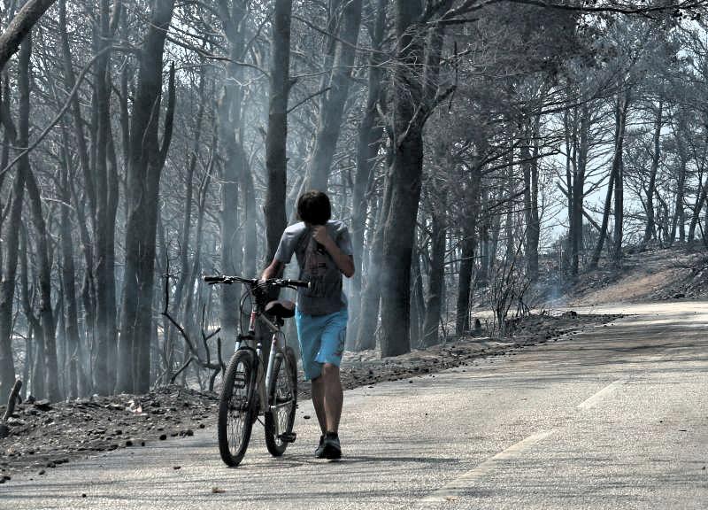 Croatia coastal wildfire - Trstenik forest on fire