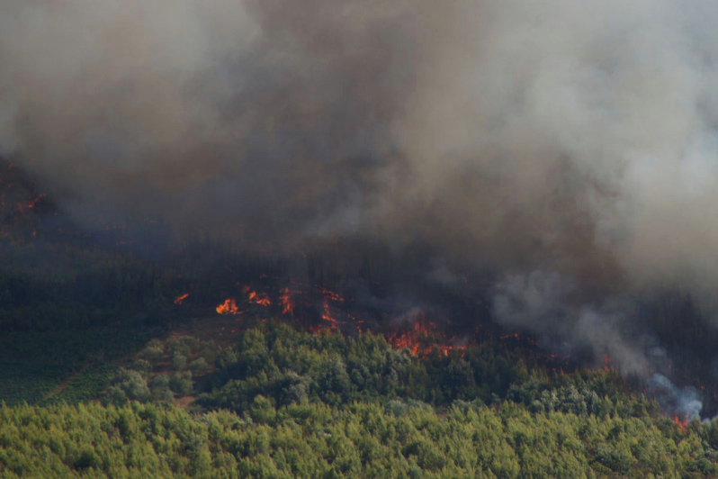 Croatia coastal wildfires - Trstenik