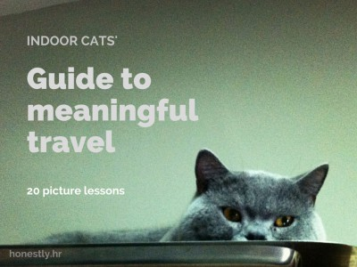 Indoor cats' guide to meaningful travel – 20 picture lessons