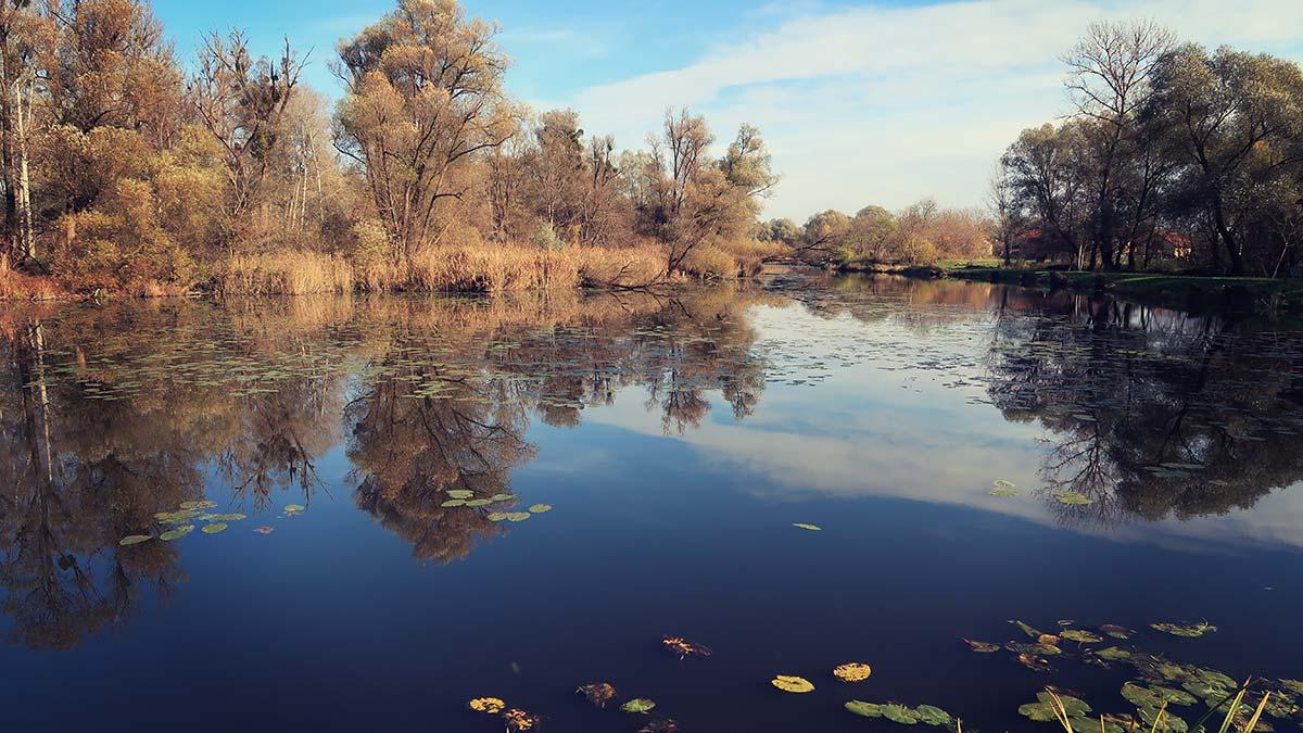 Međimurje Mura oxbow lake | Zagreb Honestly