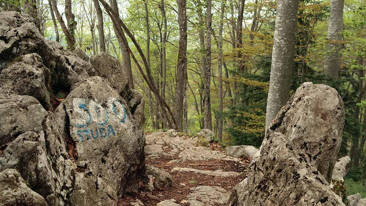Hiking on Medvednica Sljeme   Zagreb Honestly