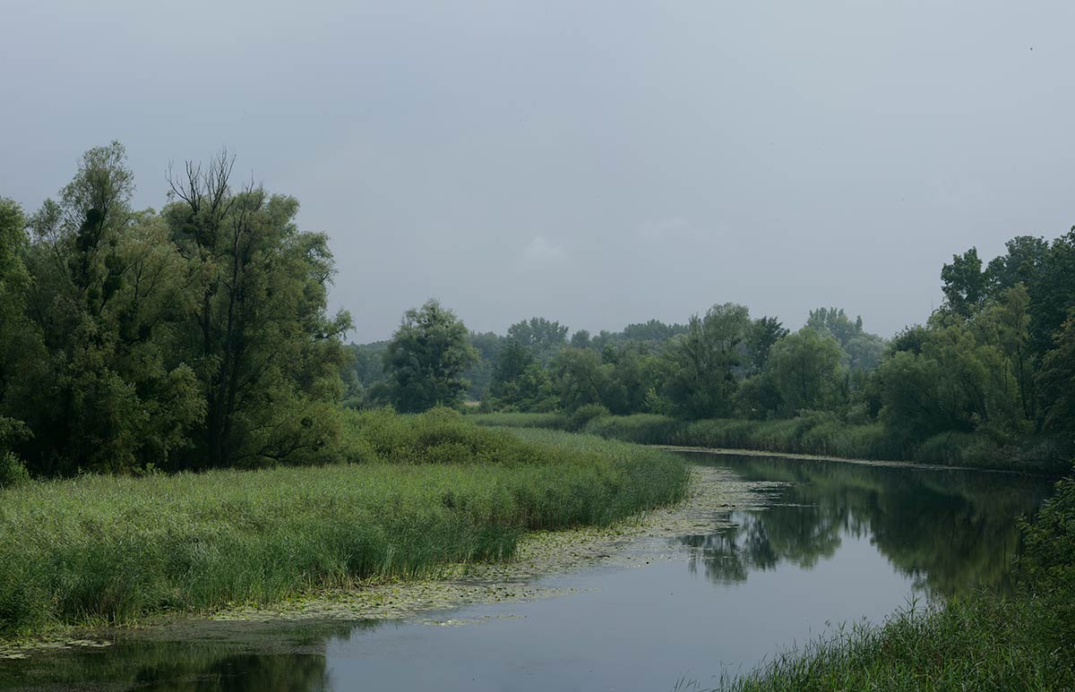 Down the Drava river, Repaš