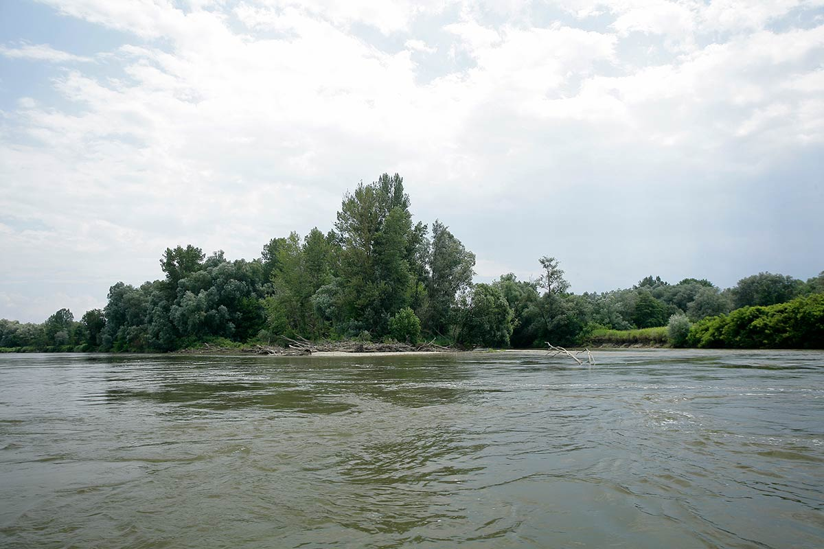 Down the Drava river