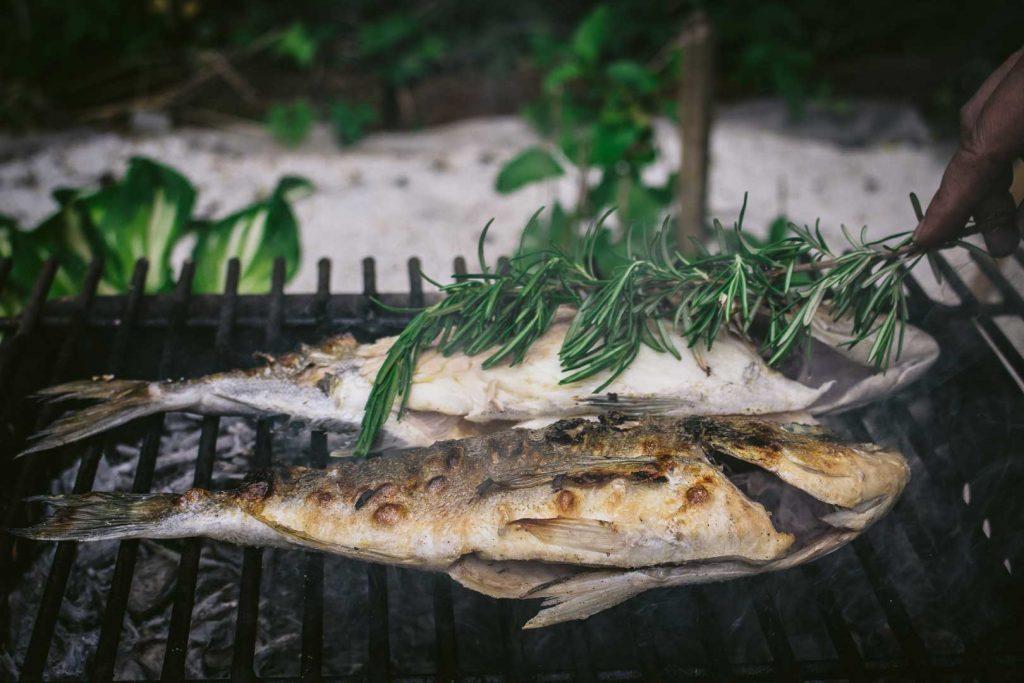 Croatian grilled fish
